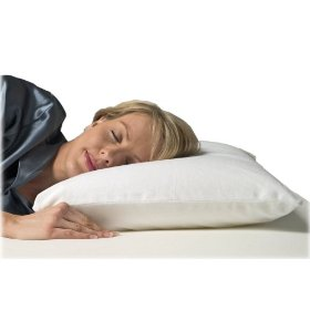 serta-4pound-molded-memory-foam-pillow